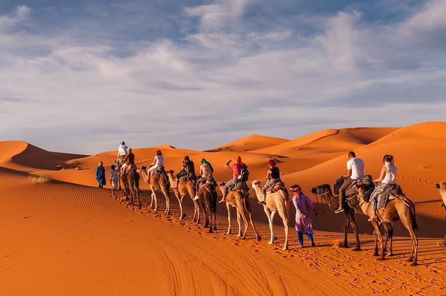 Die schönsten Wüstenreisen